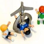 Alta de un trabajador, baja y plazos